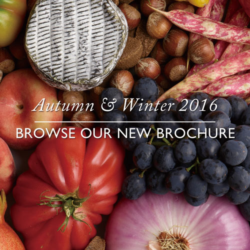 Browse Our New Brochure